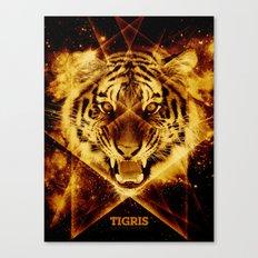 Tigris Beautiful Symmetry Canvas Print