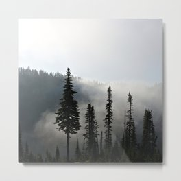 Morning Mist on the Mountain Metal Print