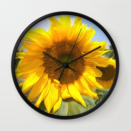 sunflower photography Wall Clock