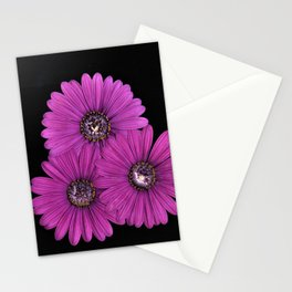 Purple Daisy Trifecta Stationery Cards