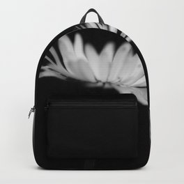 White daisys in the Black Backpack