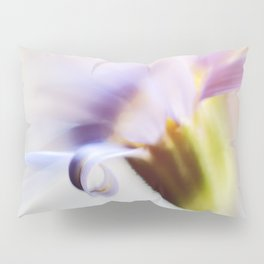 Curl Pillow Sham