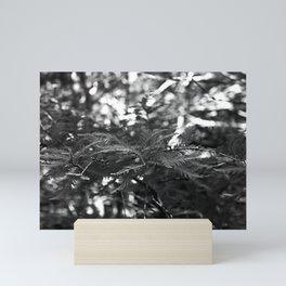 Shadowed Stories Mini Art Print