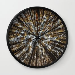 Pines Above Wall Clock