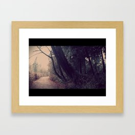 Lullaby of the Trees Framed Art Print