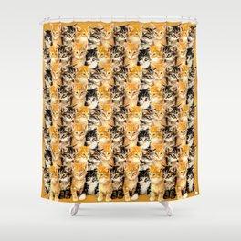 Kittywall Shower Curtain