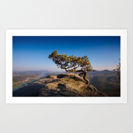 Crooked Tree in Elbe Sandstone Mountains Art Print