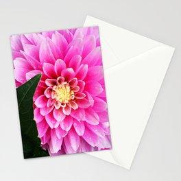 Child. Stationery Cards
