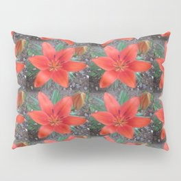 Lily Day Pillow Sham