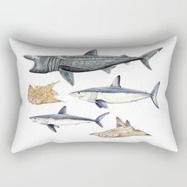Shark diversity Rectangular Pillow