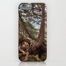 The roots Slim Case iPhone 6s
