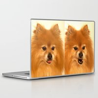 pomeranian Laptop & iPad Skins featuring Angry Pomeranian dog by Bruce Stanfield