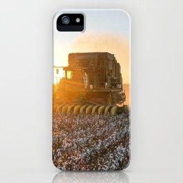 Cotton field harvest sunset  iPhone Case