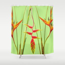 3 Exotic Jungle Flowers Helikonias green background Shower Curtain