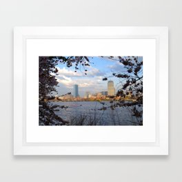 Springtime on the Charles River in Boston MA Framed Art Print