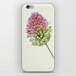 Onion, flower iPhone Skin