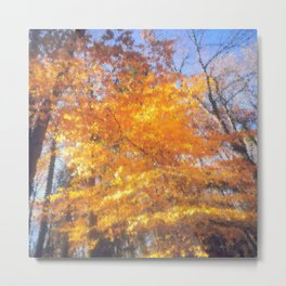 Autumnal Scene, Fall Foliage, Gold Autumnal Leaves, October Metal Print