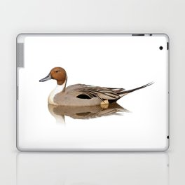 Reflections of a Northern Pintail Duck Laptop & iPad Skin