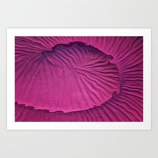 Miami Pink Snail Art Print