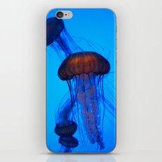 Glowing Jellyfish_1 iPhone & iPod Skin