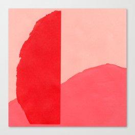 Colores V Canvas Print