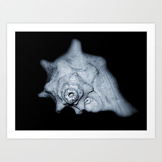 Dark Shell Art Print