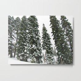 Tahoe 0367 Metal Print