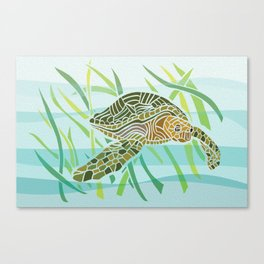 Sea Turtle at Home Canvas Print