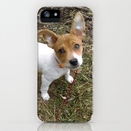 Lil Pup iPhone Case