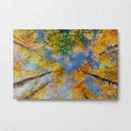 Fall trees in the sky Metal Print