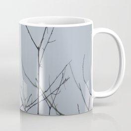 This beautiful little Downy Woodpecker Coffee Mug