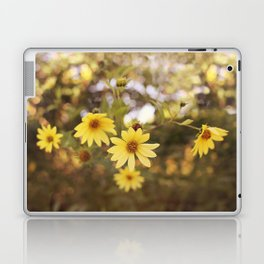 Five Flowers Laptop & iPad Skin