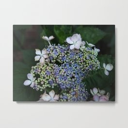 Flower Pebbles Metal Print