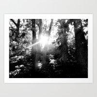 Light leak Art Print