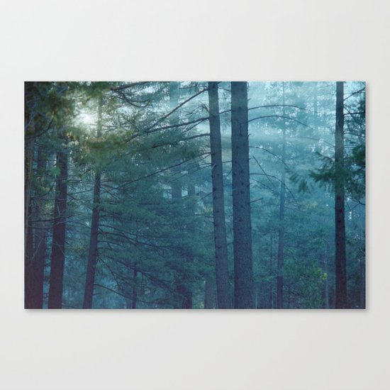 no lying in the still Canvas Print
