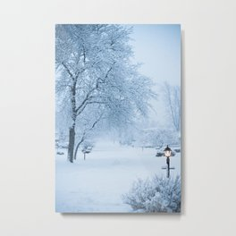 Calm Winter Morning Metal Print