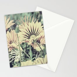 Desert Daisies - Daisy Project in memory of Mackenzie Stationery Cards