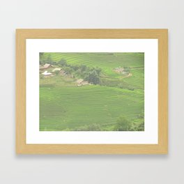 Sapa Rice Fields Framed Art Print