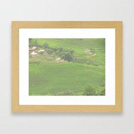 Sapa Rice Fields Framed Art Print