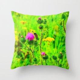 Burnet Butterfly Throw Pillow