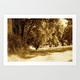 Take a walk Art Print