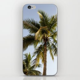 Palm Tree Paradise iPhone Skin
