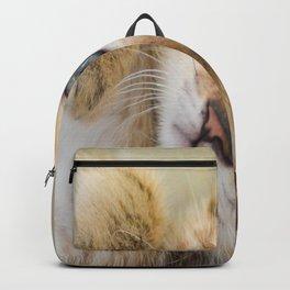 Little Demon Backpack