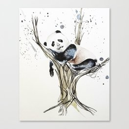 Panda in the Tree Canvas Print