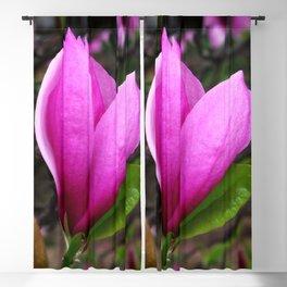 Spring Magnolia Blackout Curtain