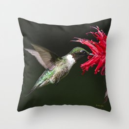 Hummingbird XV Throw Pillow