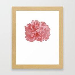 January Carnation Floral Designer Or Arranger Gift Framed Art Print