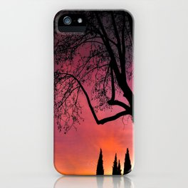 Sunset Dream iPhone Case