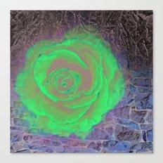 Dark Rose Canvas Print