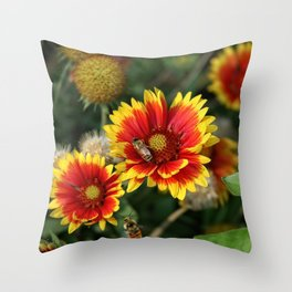 Bees on Blanket Flowers Throw Pillow
